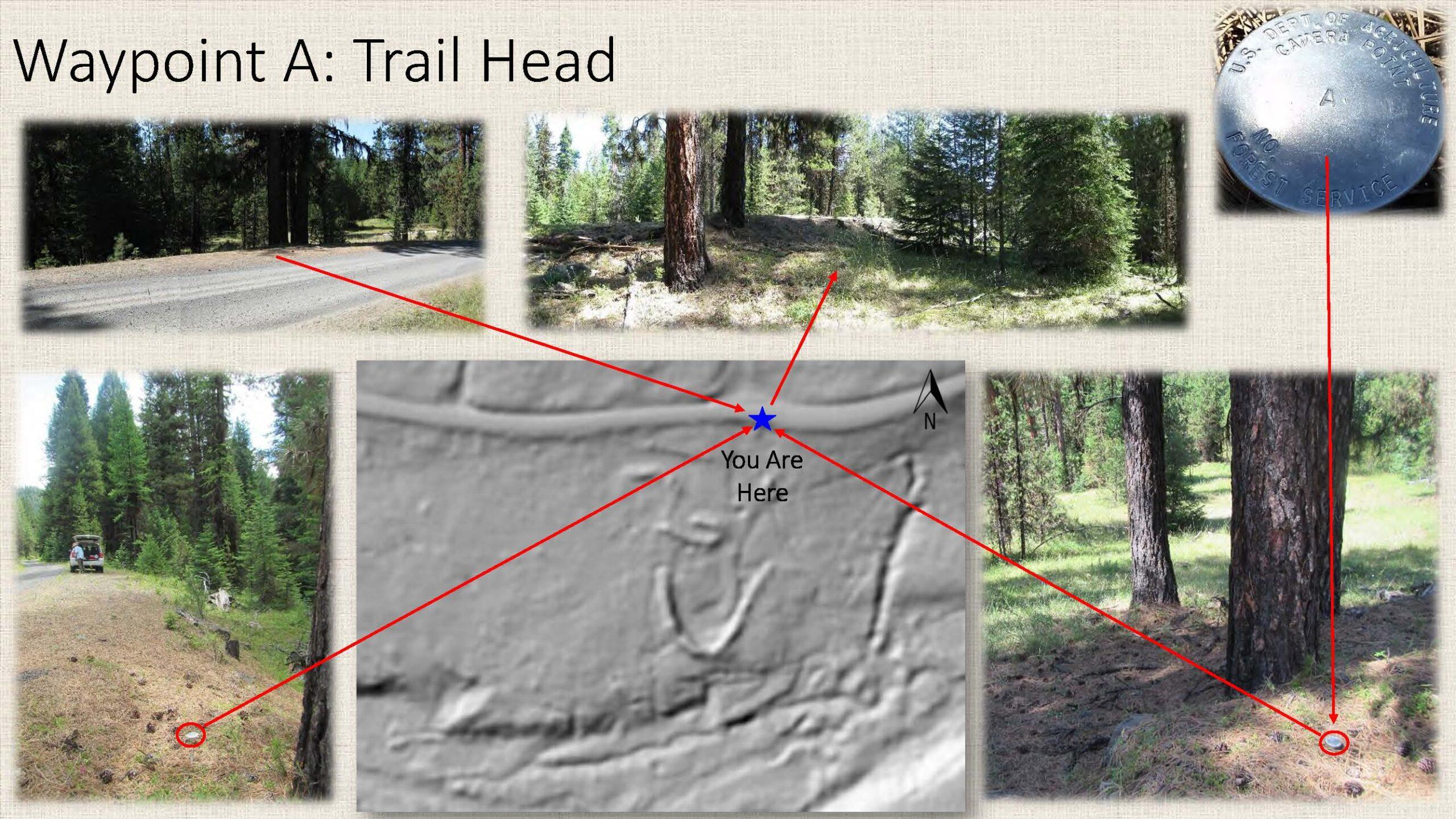 Waypoint A: Trail Head