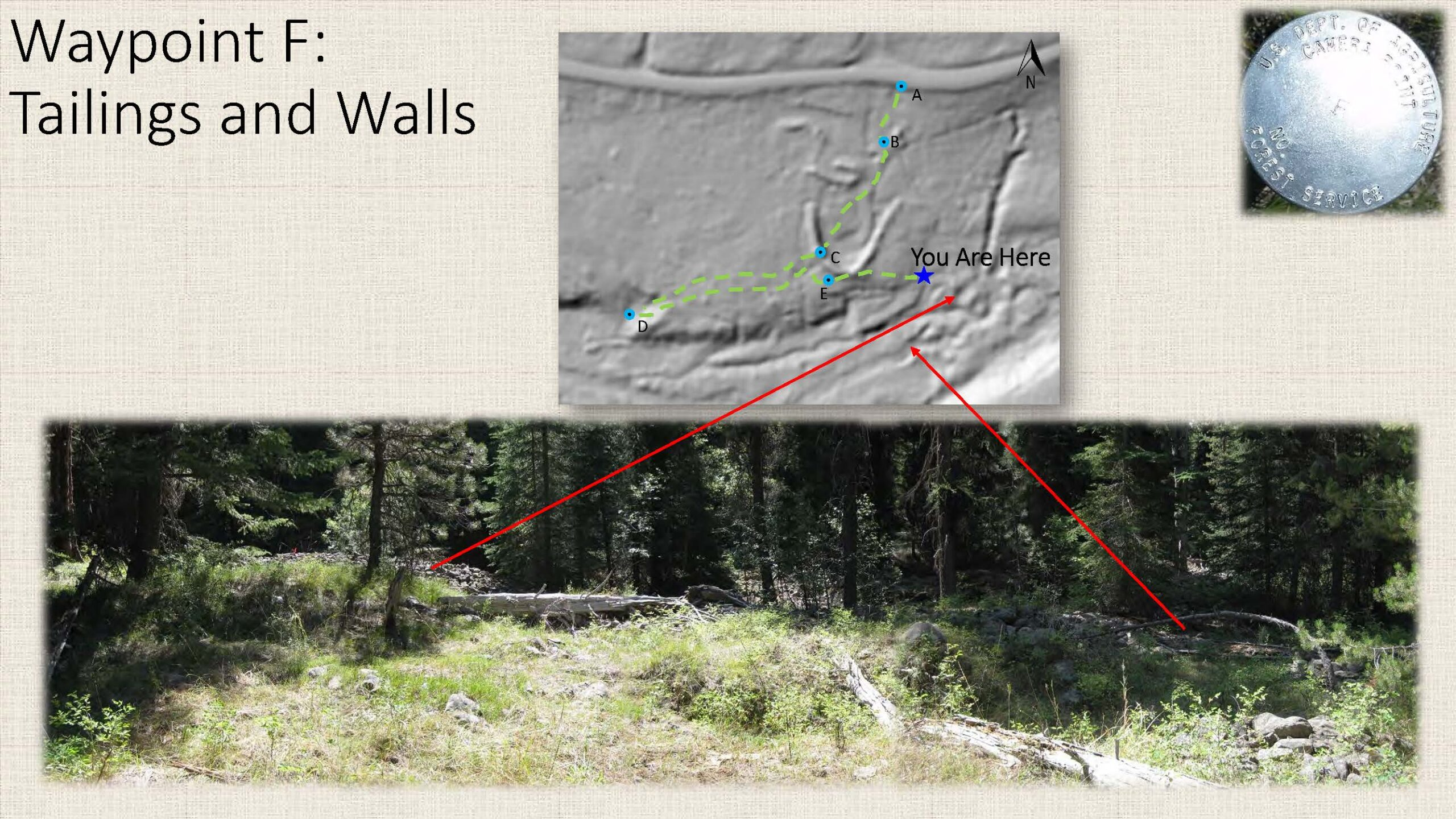 Waypoint F: Tailings and Walls