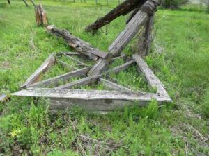A close-up of the collapsed P-Ranch Beef Wheel in 2017. The wooden frame is starting be be grown over with weeds