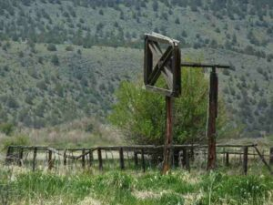 The P-Ranch Beef Wheel in 2008